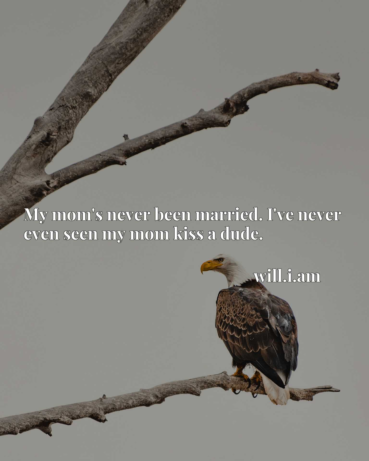 Quote Picture :My mom's never been married. I've never even seen my mom kiss a dude.
