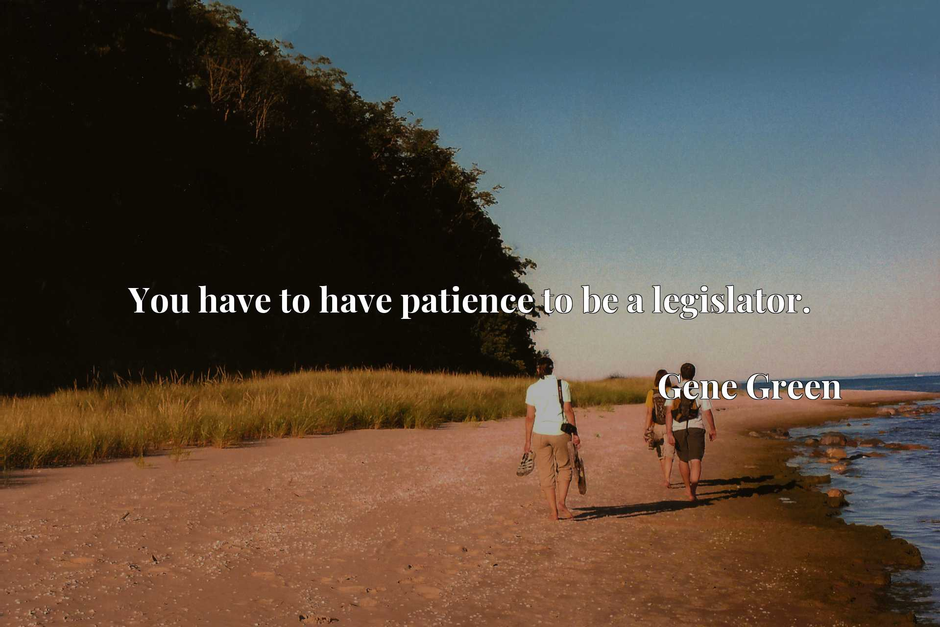 Quote Picture :You have to have patience to be a legislator.