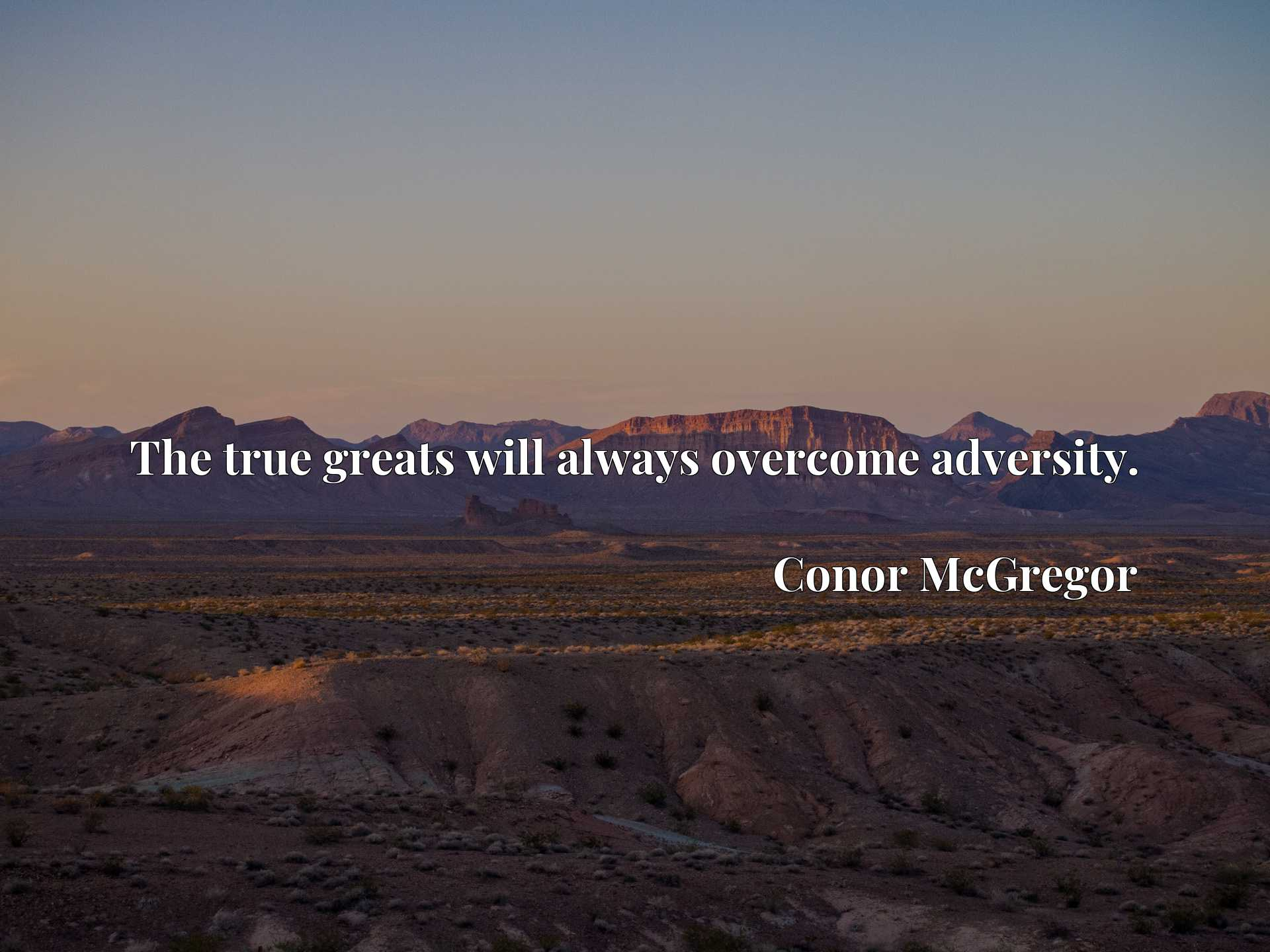 Quote Picture :The true greats will always overcome adversity.