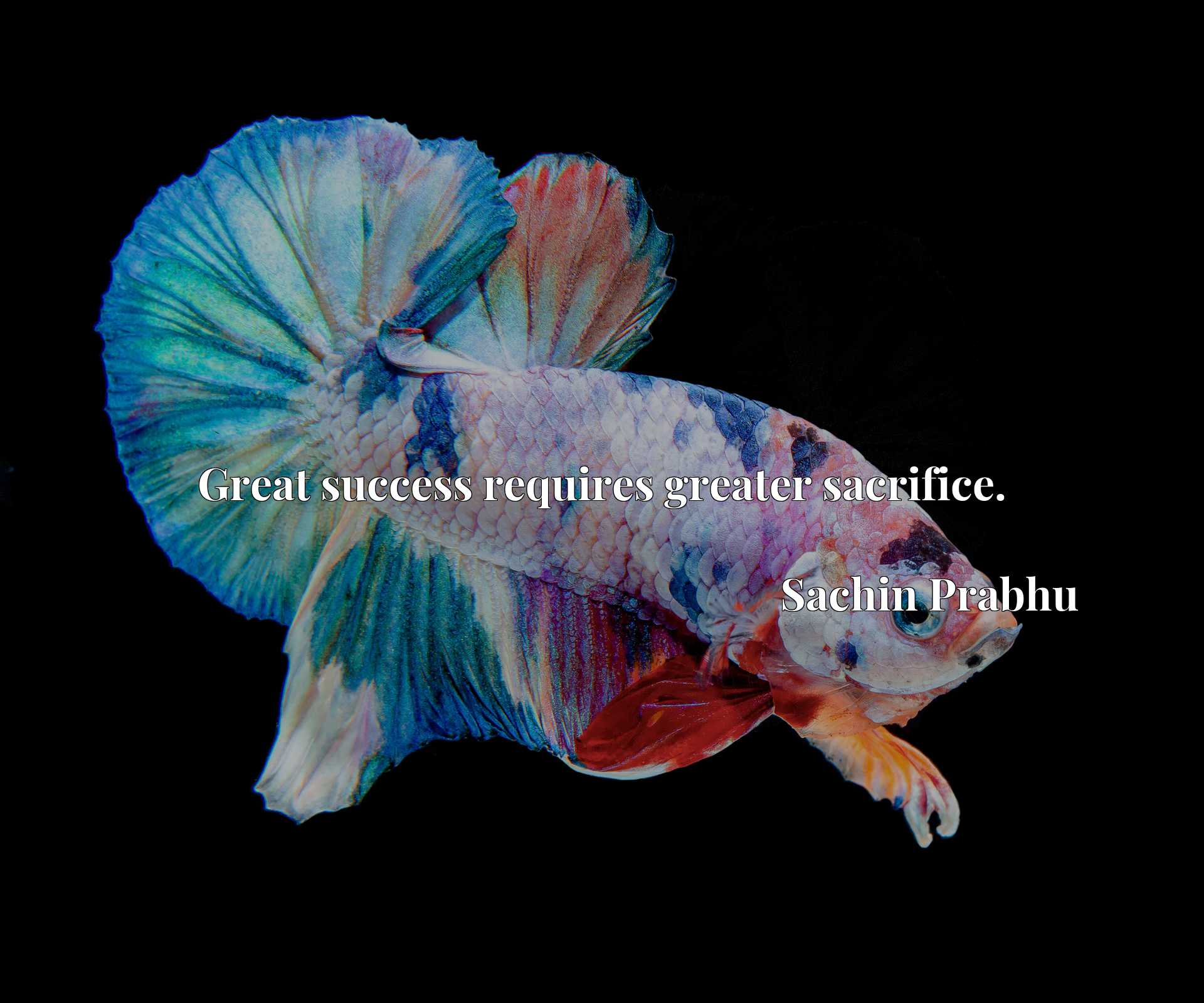 Quote Picture :Great success requires greater sacrifice.