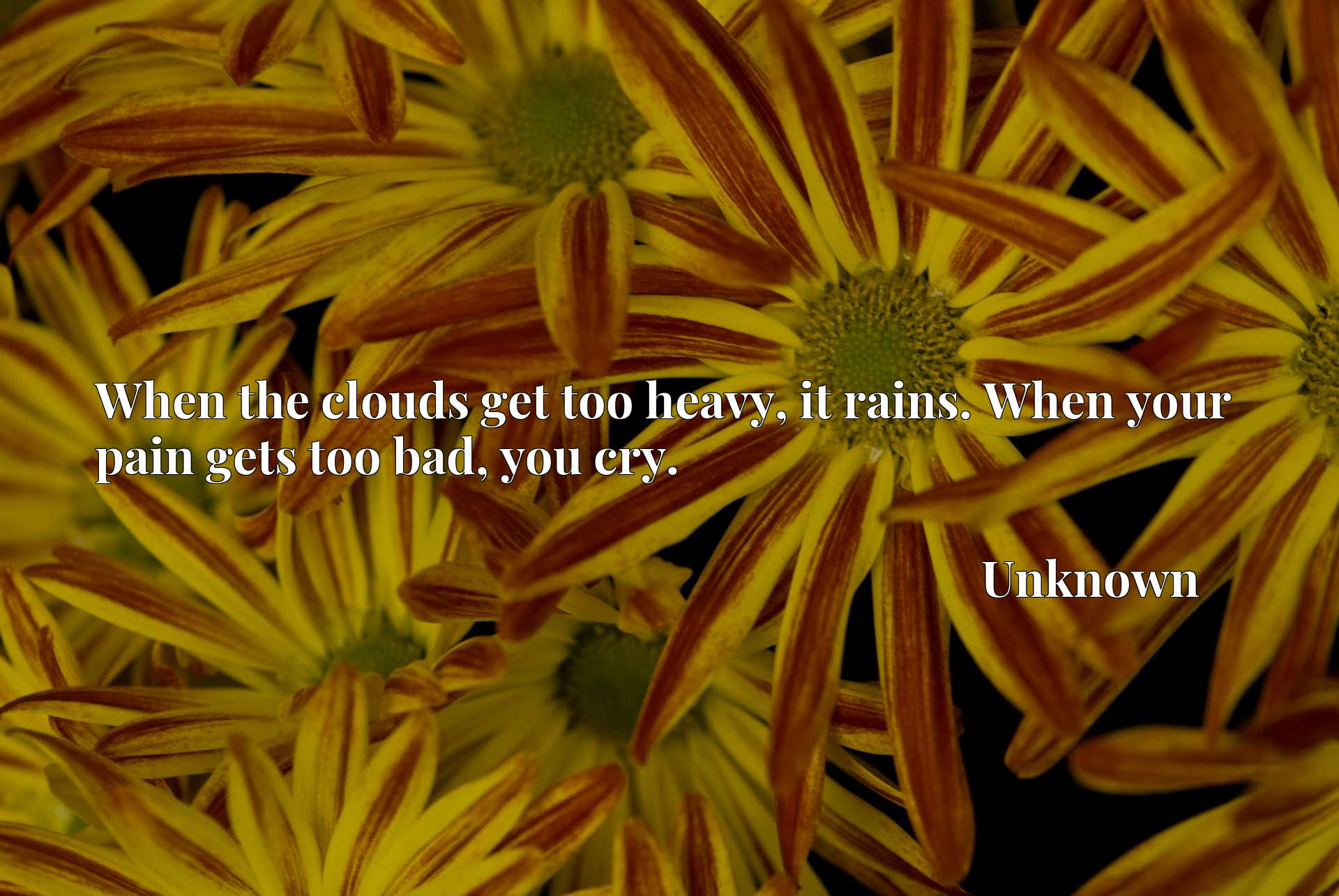 Quote Picture :When the clouds get too heavy, it rains. When your pain gets too bad, you cry.