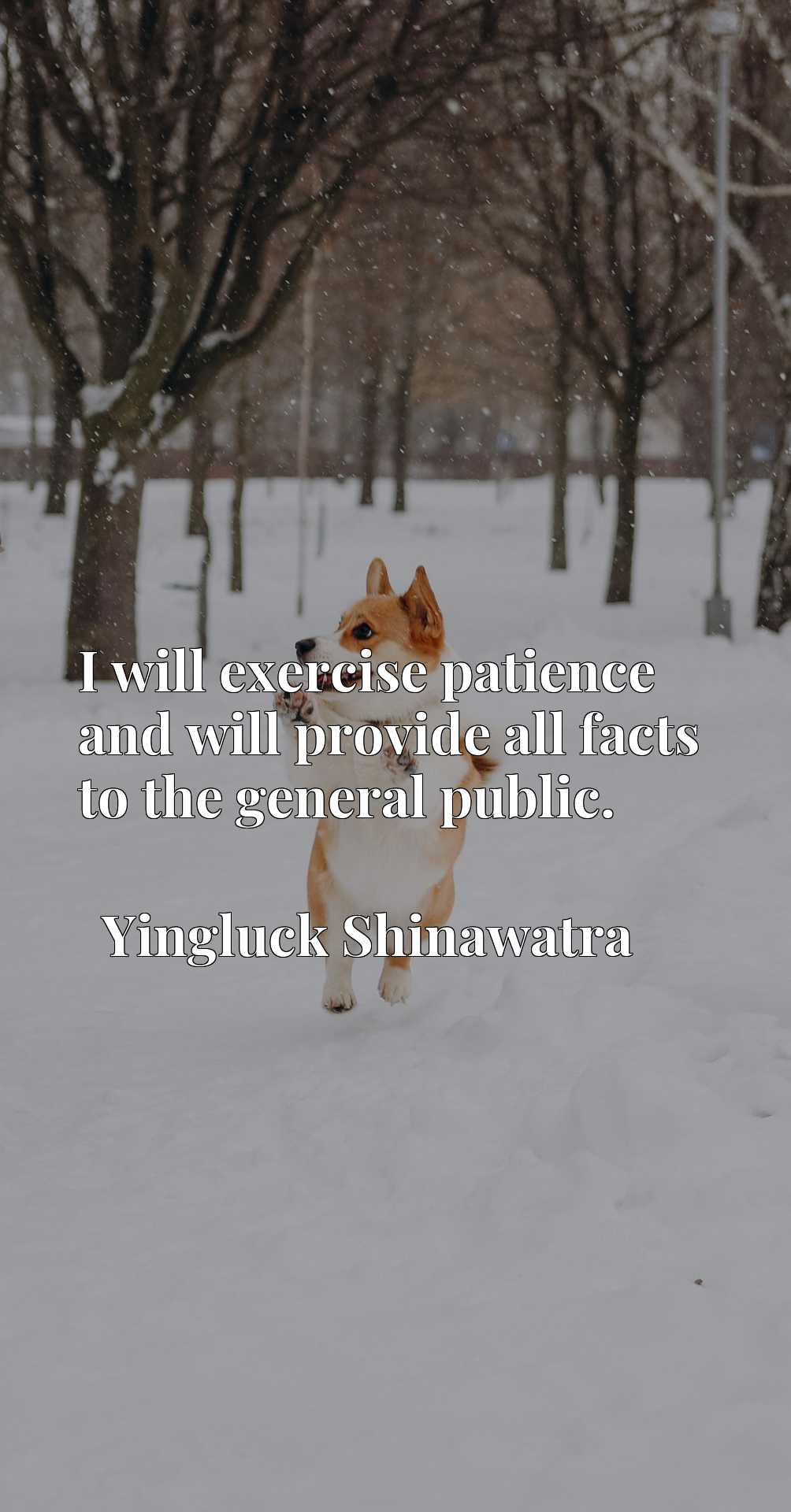Quote Picture :I will exercise patience and will provide all facts to the general public.