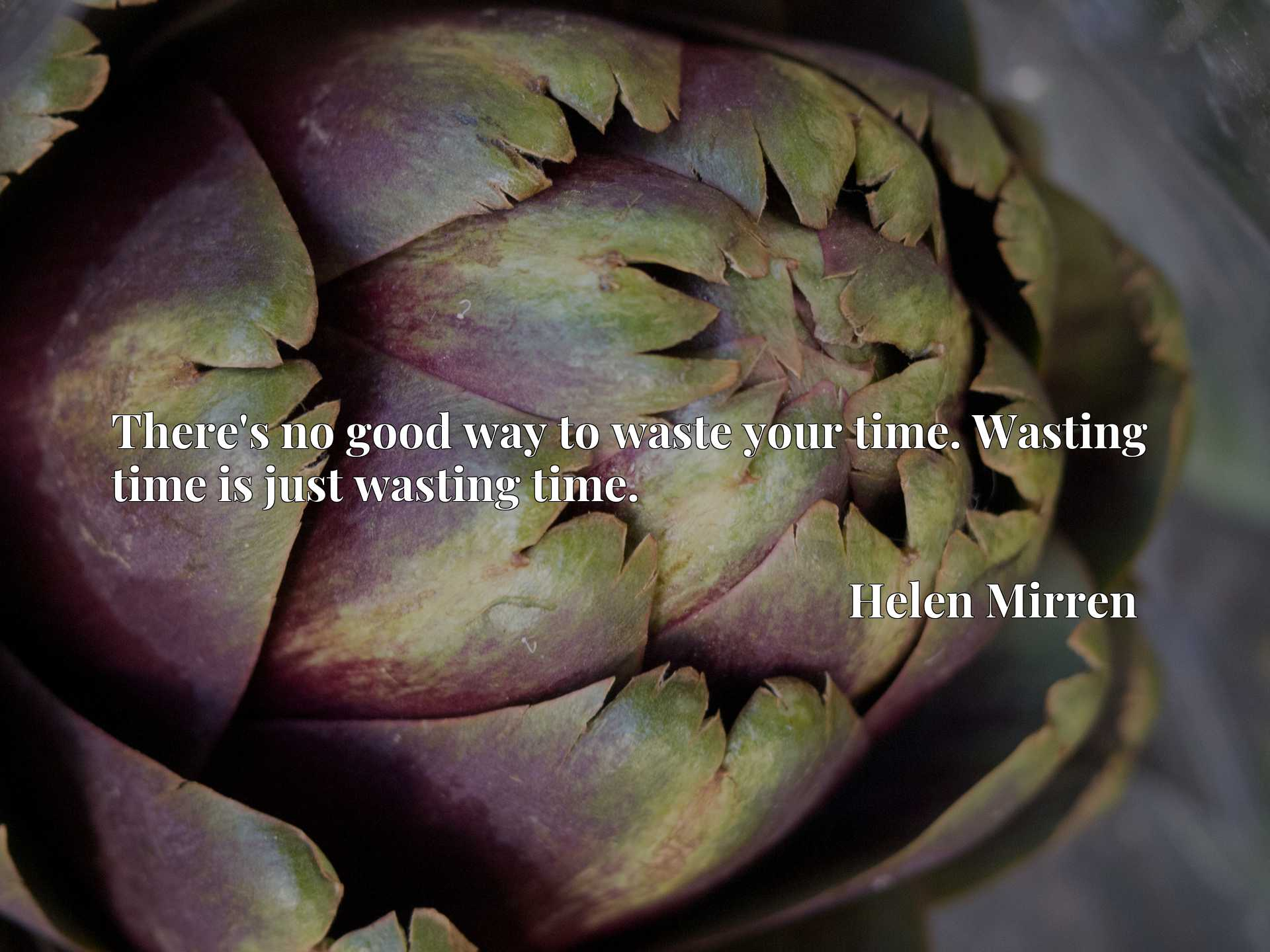 Quote Picture :There's no good way to waste your time. Wasting time is just wasting time.