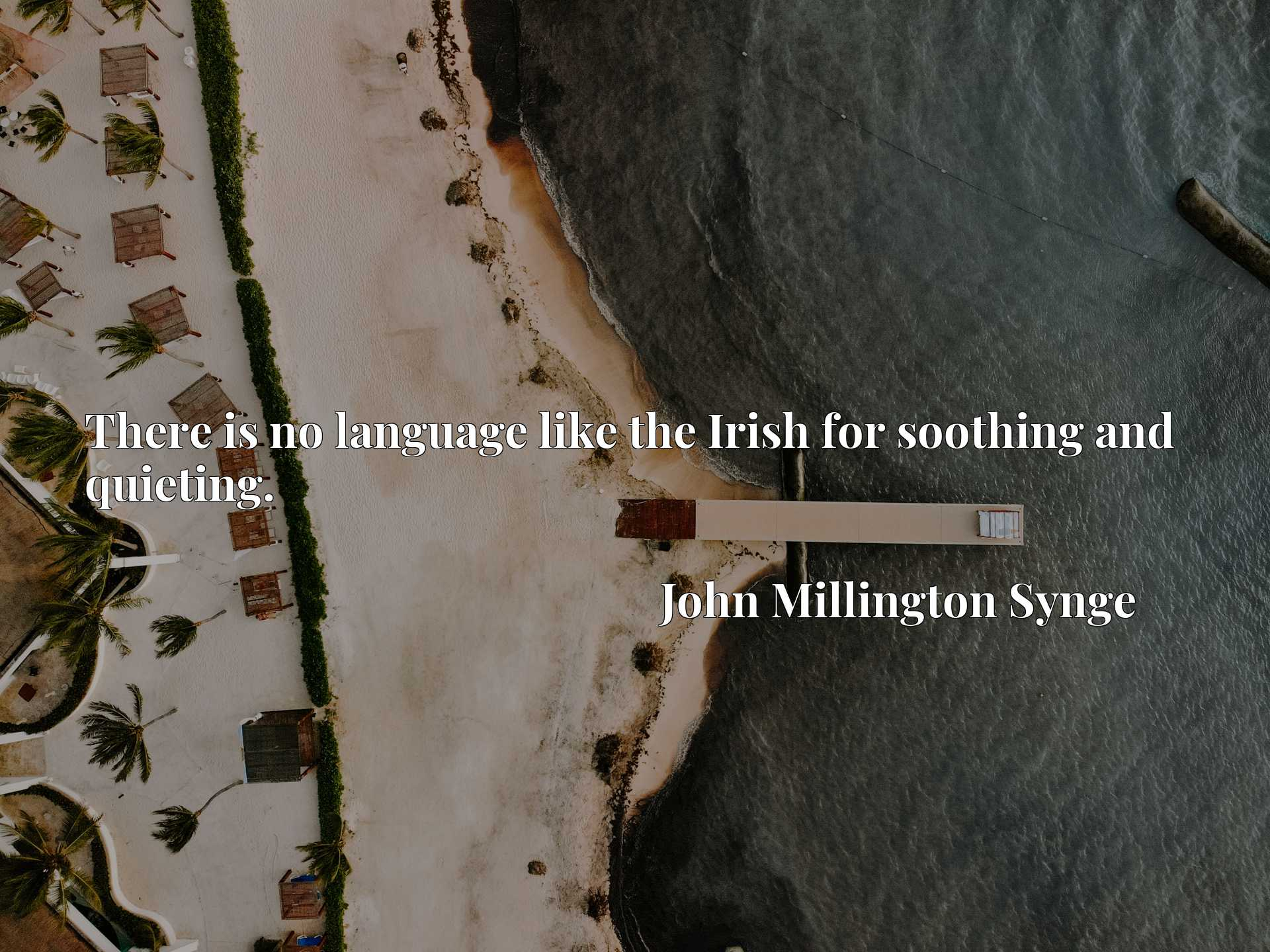 Quote Picture :There is no language like the Irish for soothing and quieting.