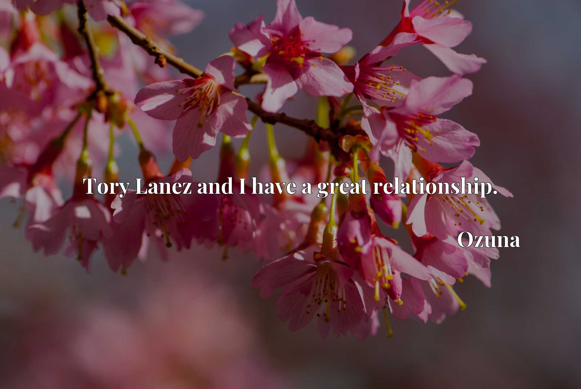 Quote Picture :Tory Lanez and I have a great relationship.