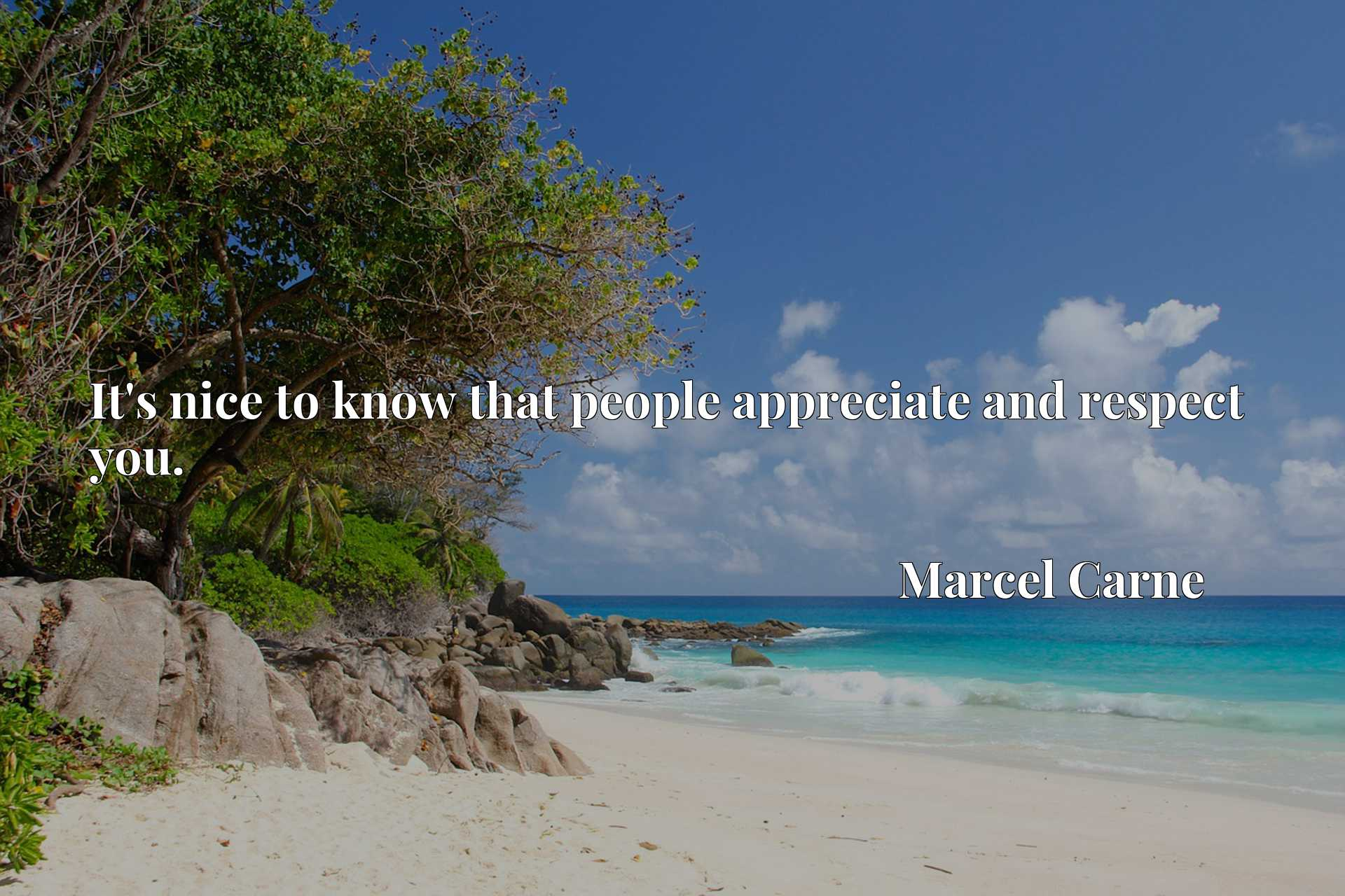 Quote Picture :It's nice to know that people appreciate and respect you.