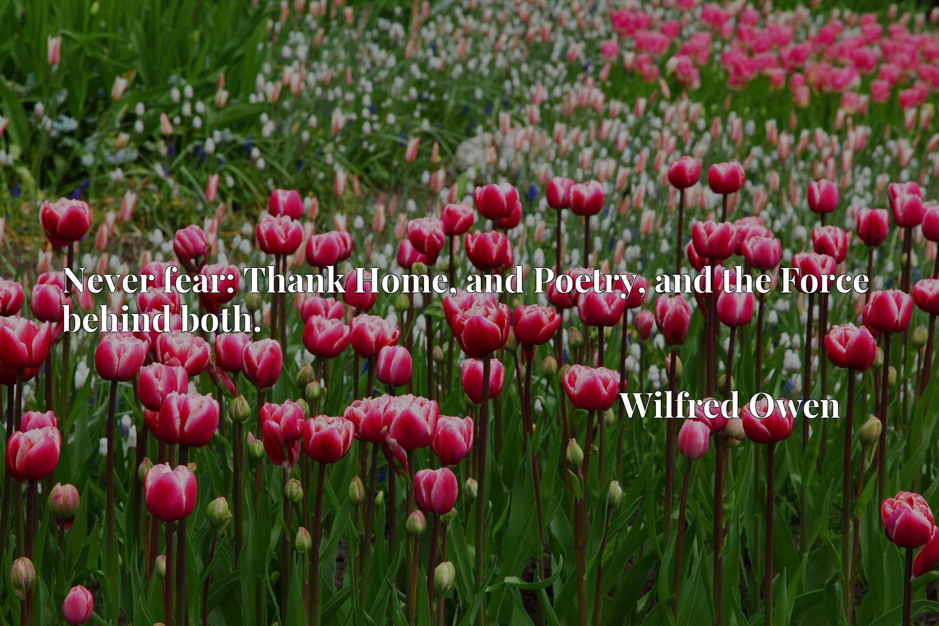 Quote Picture :Never fear: Thank Home, and Poetry, and the Force behind both.