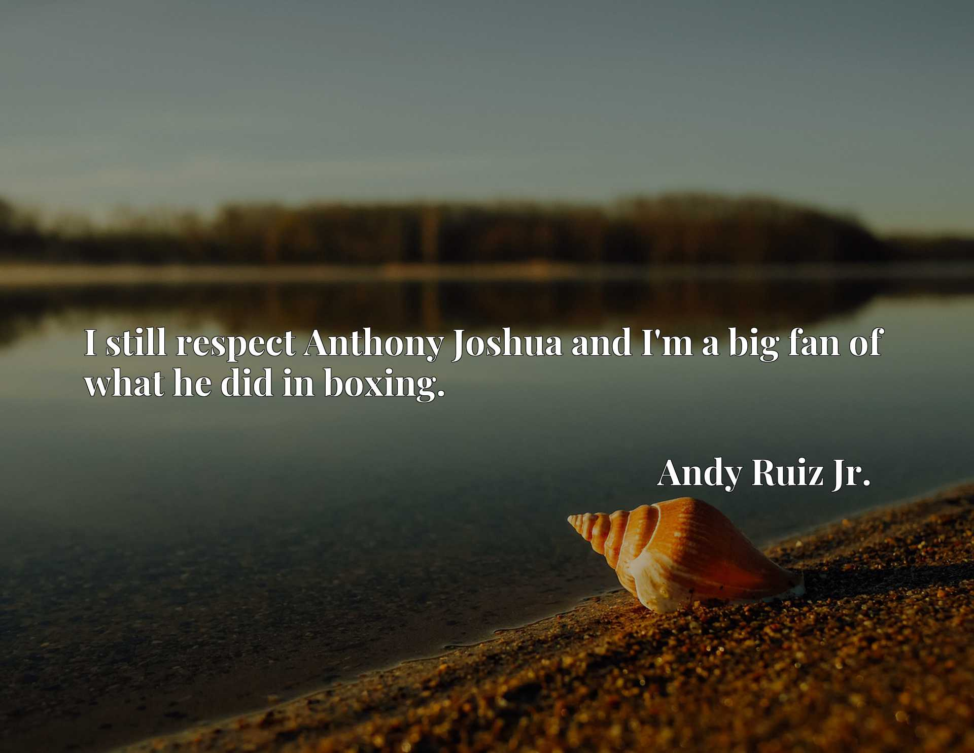 Quote Picture :I still respect Anthony Joshua and I'm a big fan of what he did in boxing.