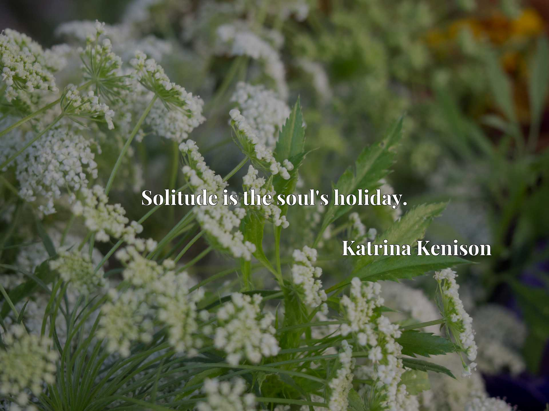 Quote Picture :Solitude is the soul's holiday.