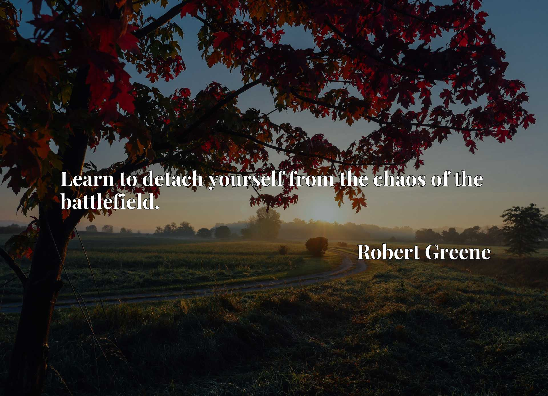 Quote Picture :Learn to detach yourself from the chaos of the battlefield.