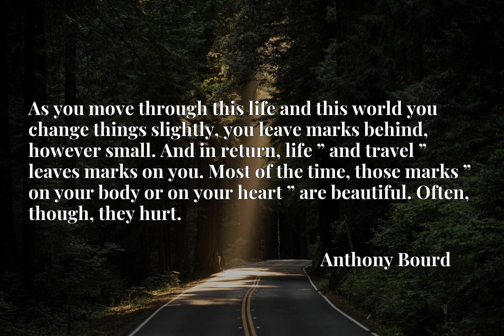 """As you move through this life and this world you change things slightly, you leave marks behind, however small. And in return, life """" and travel """" leaves marks on you. Most of the time, those marks """" on your body or on your heart """" are beautiful. Often, though, they hurt."""