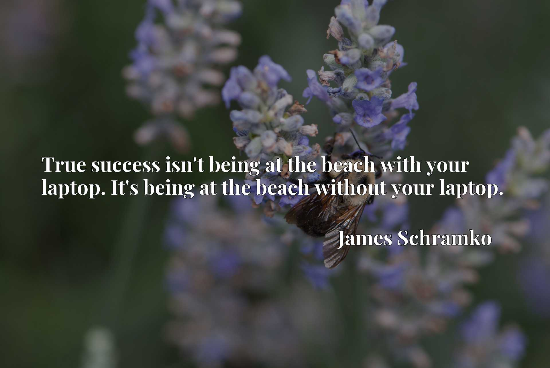 True success isn't being at the beach with your laptop. It's being at the beach without your laptop.