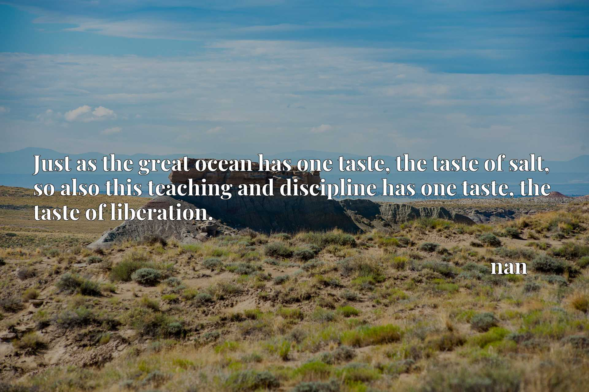 Just as the great ocean has one taste, the taste of salt, so also this teaching and discipline has one taste, the taste of liberation.