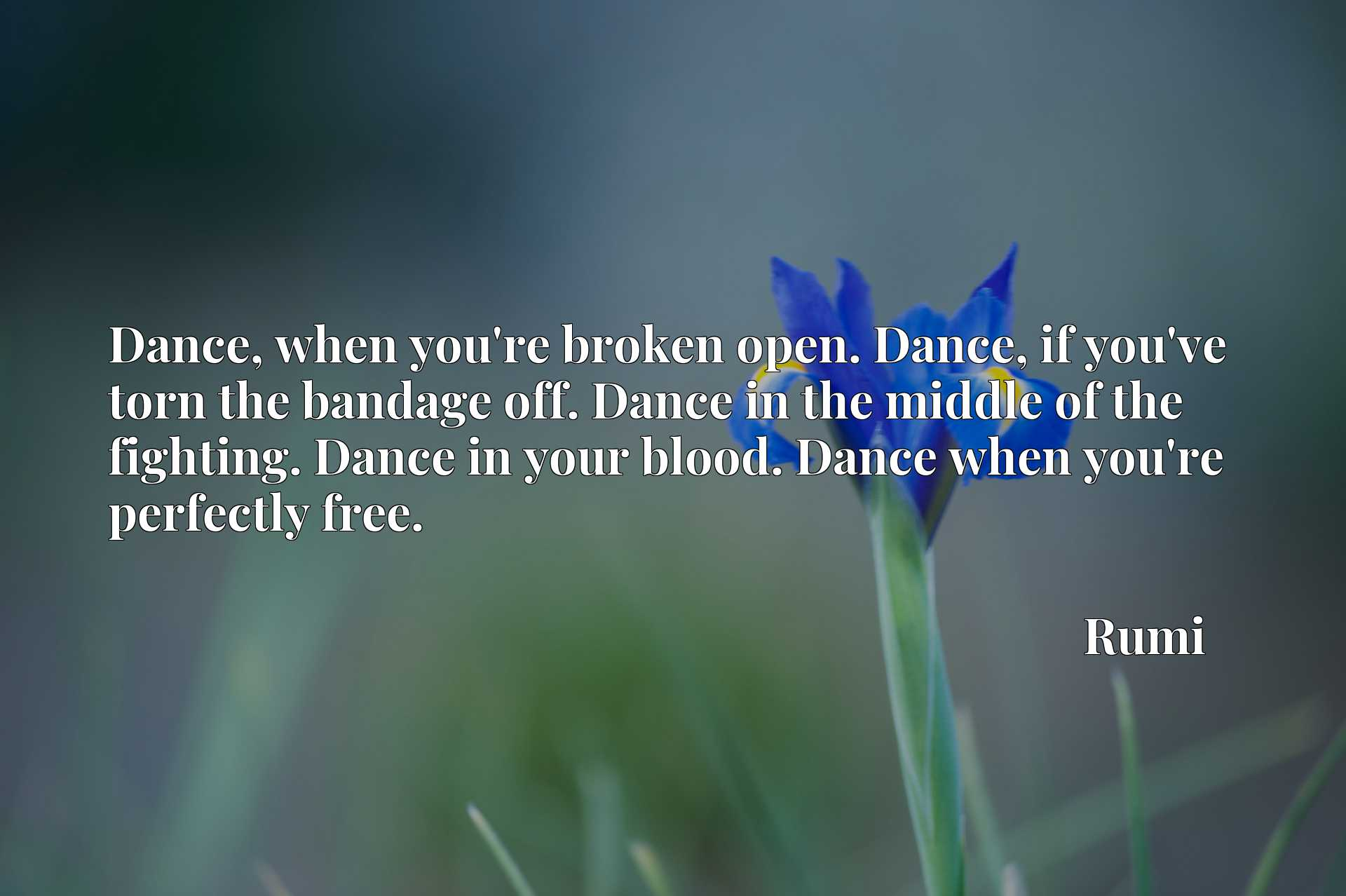 Dance, when you're broken open. Dance, if you've torn the bandage off. Dance in the middle of the fighting. Dance in your blood. Dance when you're perfectly free.
