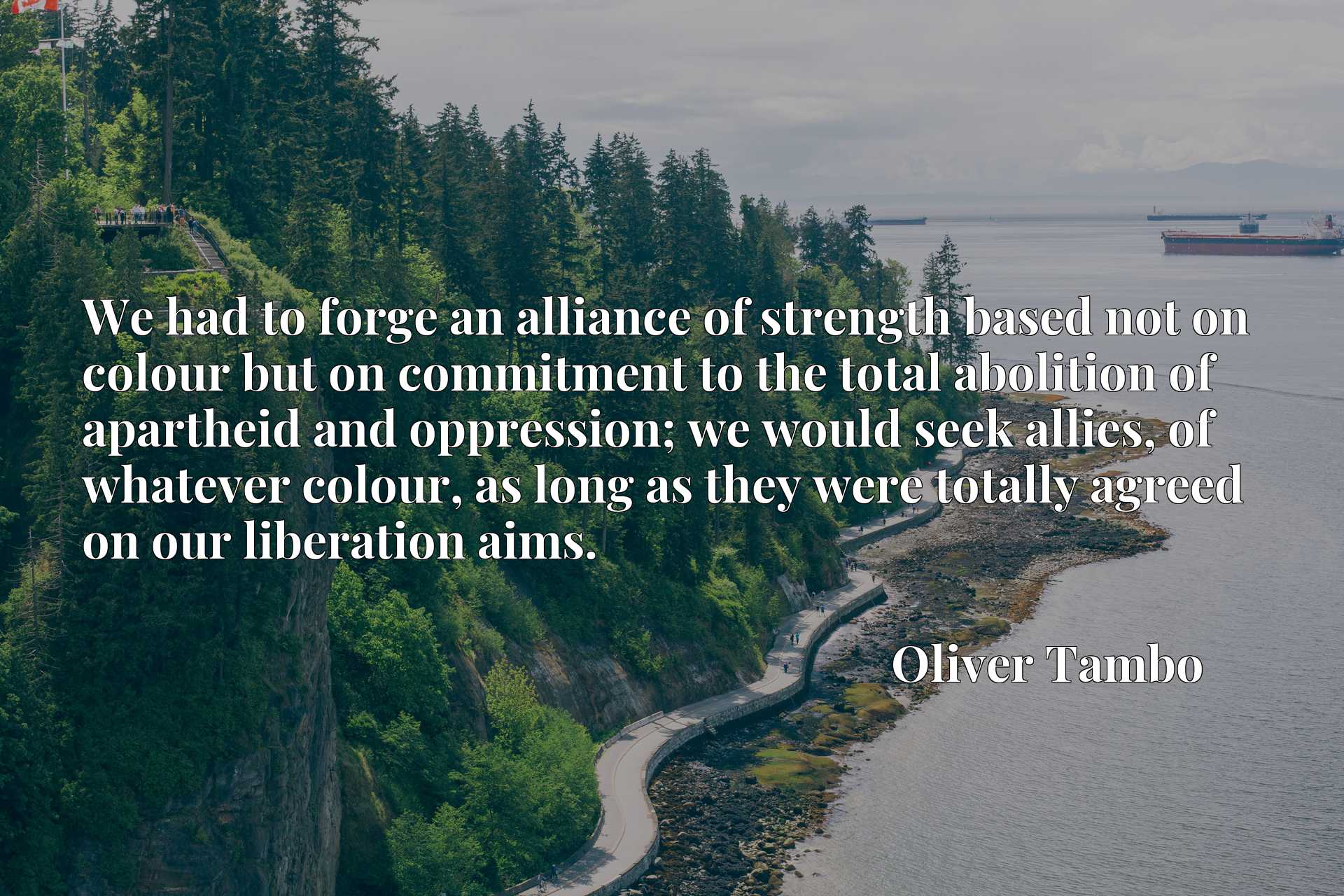We had to forge an alliance of strength based not on colour but on commitment to the total abolition of apartheid and oppression; we would seek allies, of whatever colour, as long as they were totally agreed on our liberation aims.