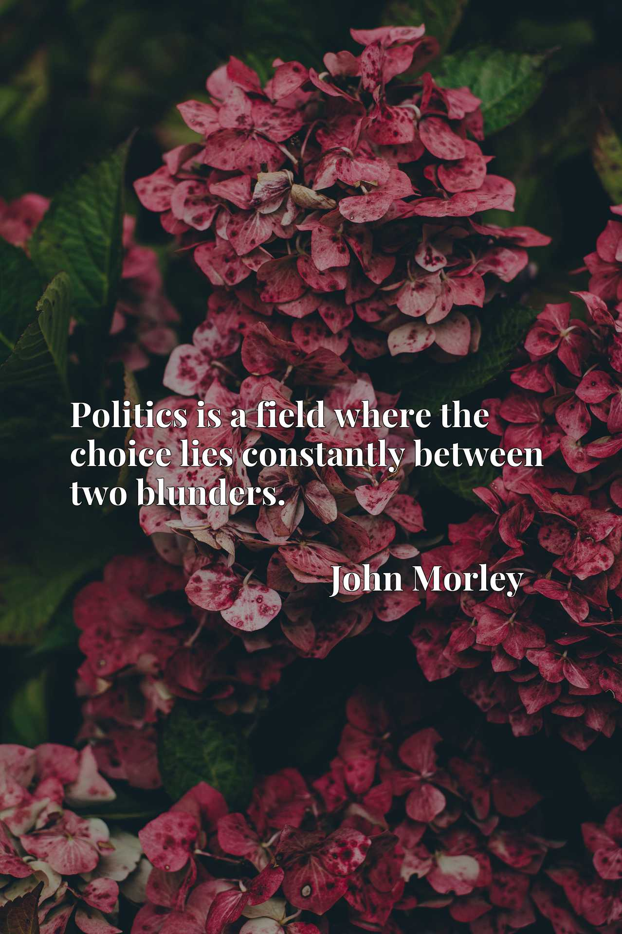Politics is a field where the choice lies constantly between two blunders.