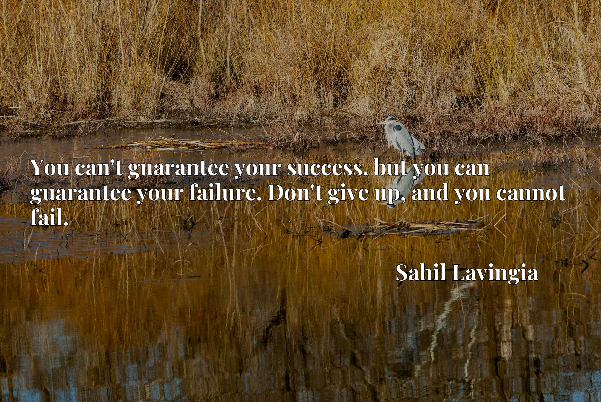 You can't guarantee your success, but you can guarantee your failure. Don't give up, and you cannot fail.