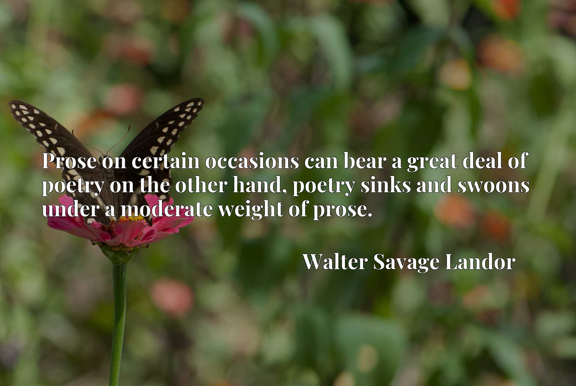 Prose on certain occasions can bear a great deal of poetry on the other hand, poetry sinks and swoons under a moderate weight of prose.