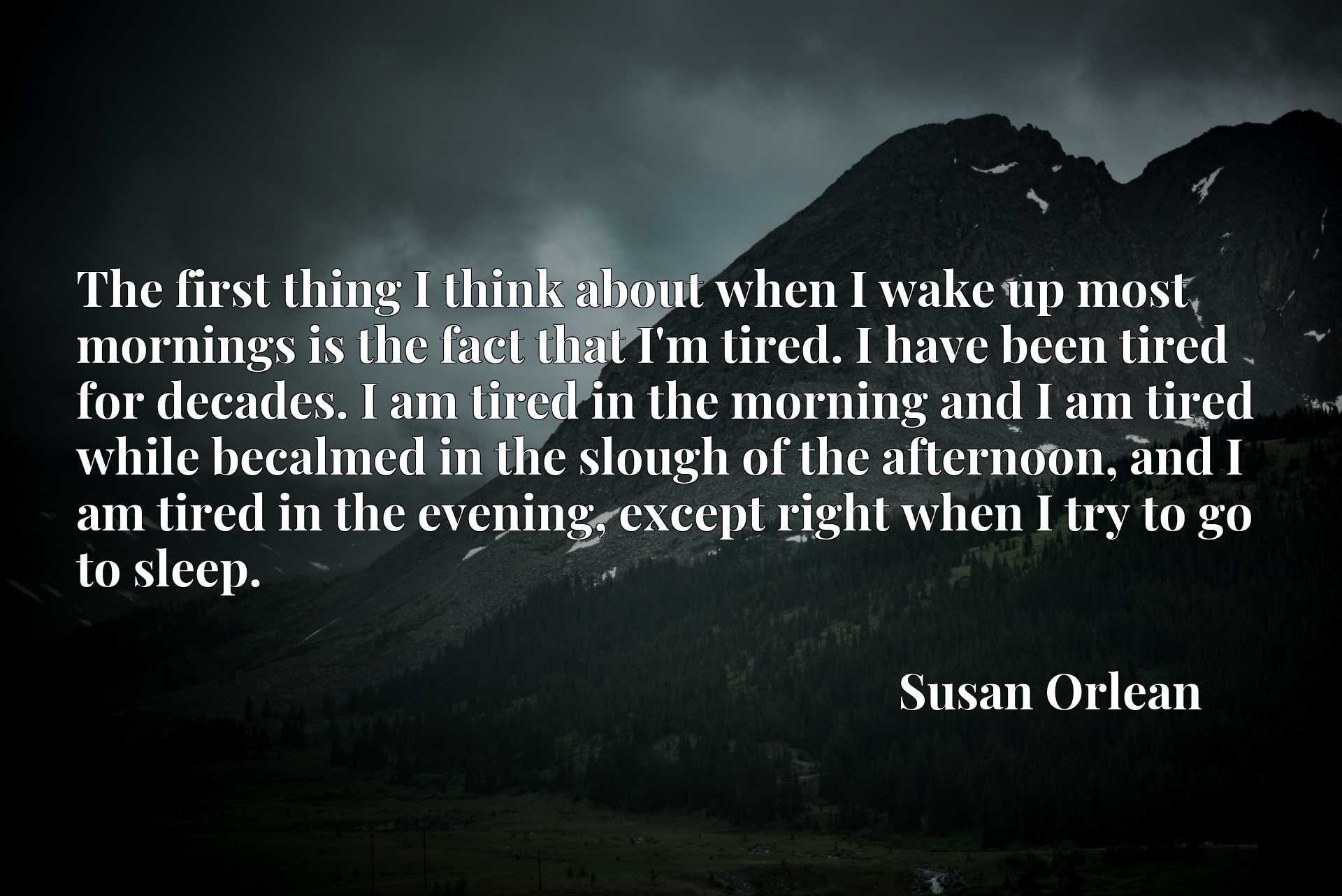 The first thing I think about when I wake up most mornings is the fact that I'm tired. I have been tired for decades. I am tired in the morning and I am tired while becalmed in the slough of the afternoon, and I am tired in the evening, except right when I try to go to sleep.