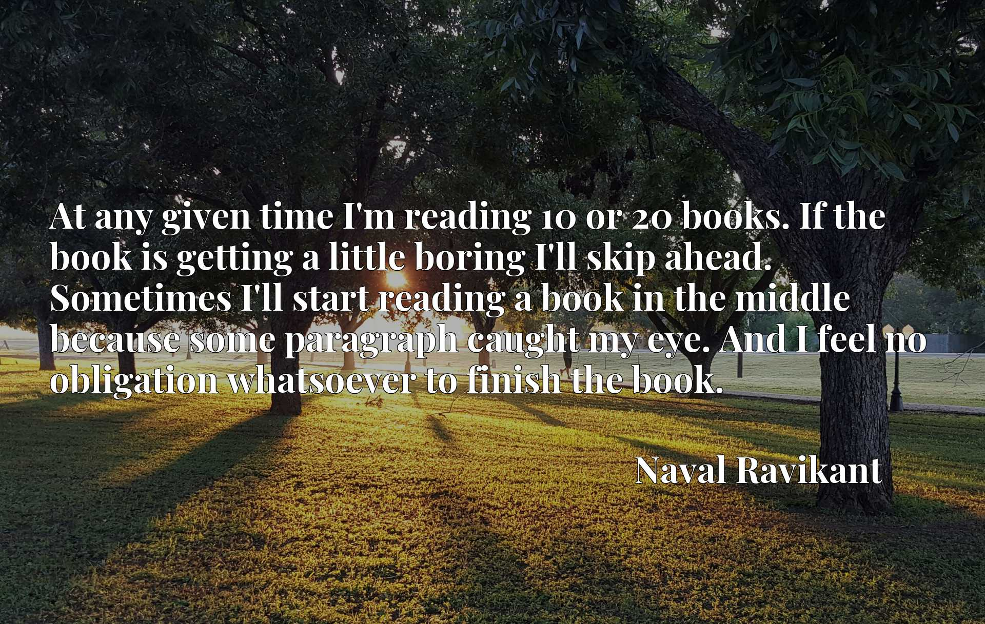 At any given time I'm reading 10 or 20 books. If the book is getting a little boring I'll skip ahead. Sometimes I'll start reading a book in the middle because some paragraph caught my eye. And I feel no obligation whatsoever to finish the book.