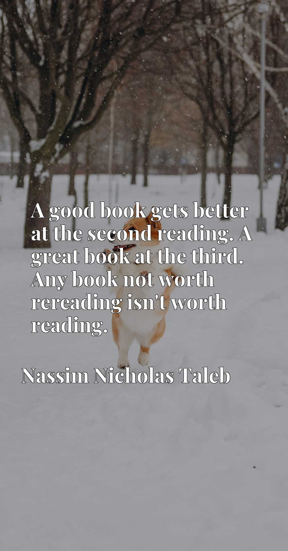 A good book gets better at the second reading. A great book at the third. Any book not worth rereading isn't worth reading.