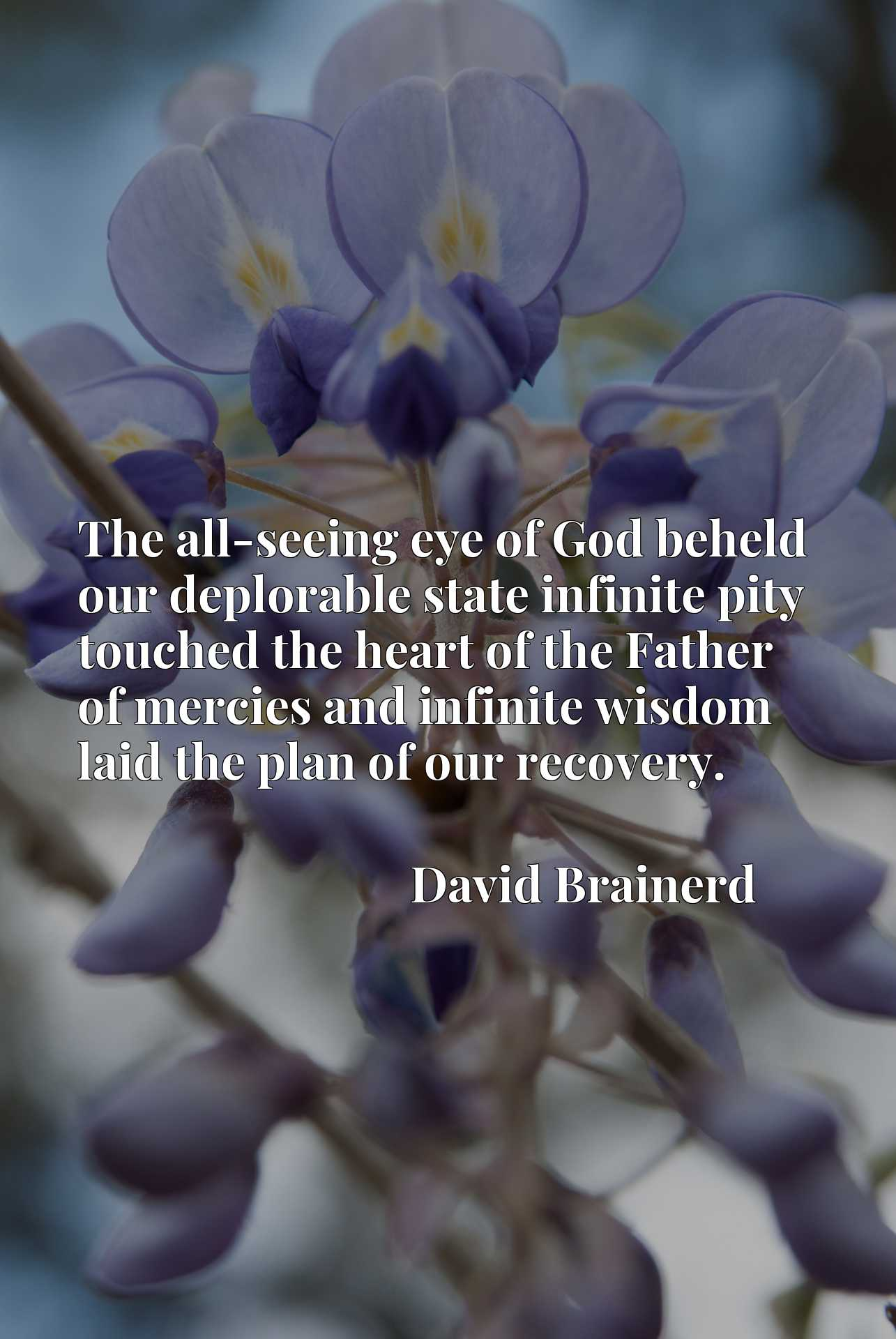 The all-seeing eye of God beheld our deplorable state infinite pity touched the heart of the Father of mercies and infinite wisdom laid the plan of our recovery.