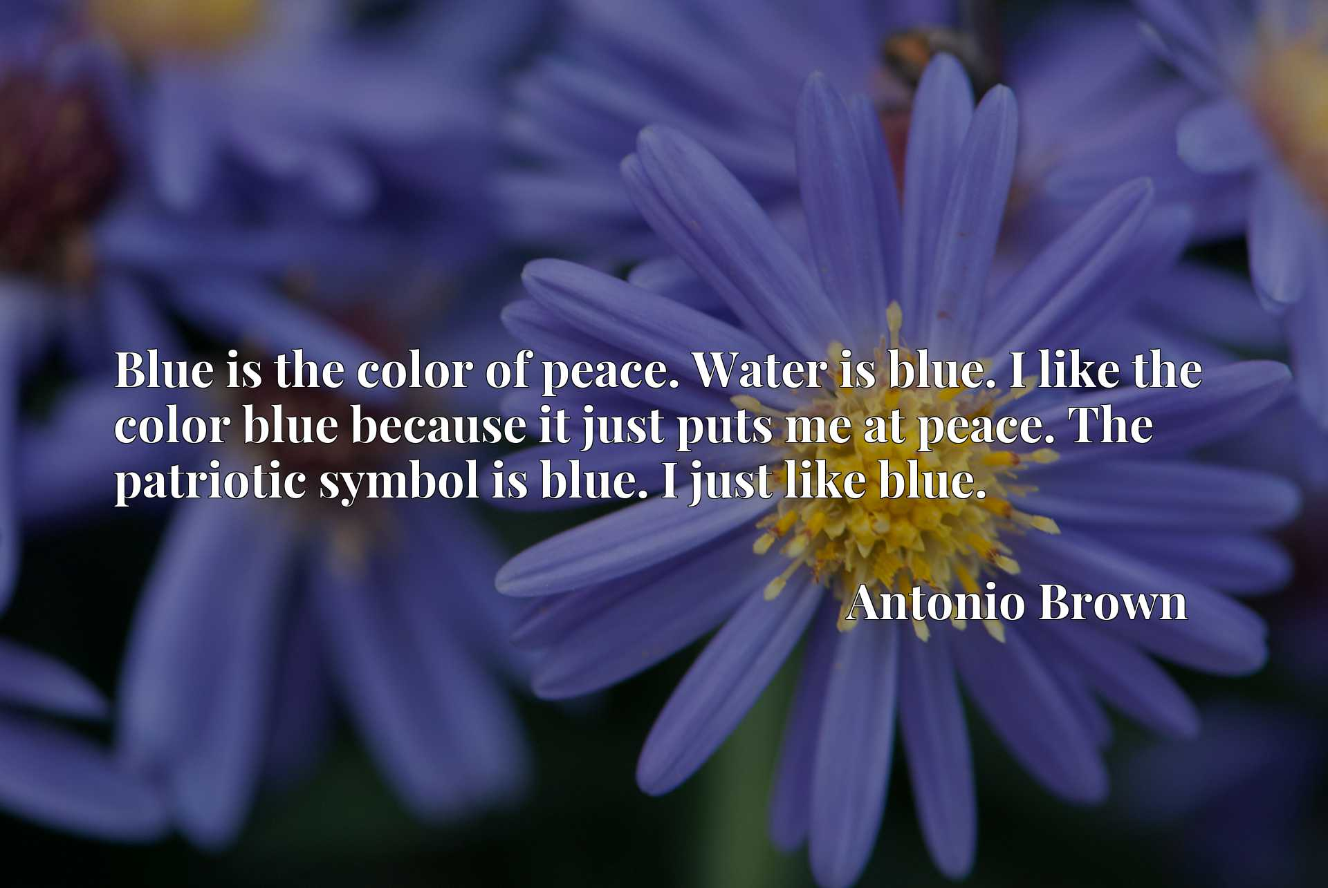 Blue is the color of peace. Water is blue. I like the color blue because it just puts me at peace. The patriotic symbol is blue. I just like blue.