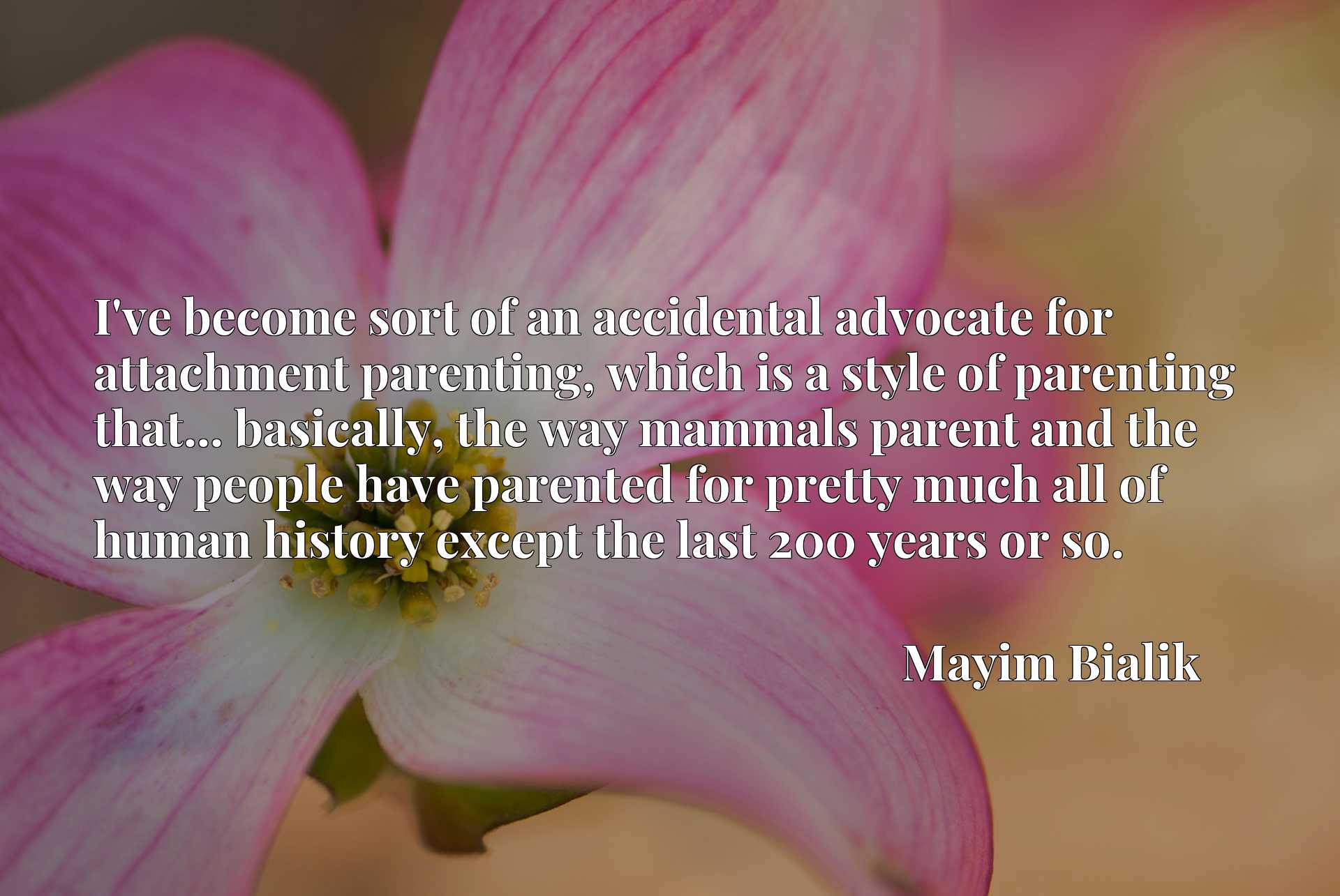 I've become sort of an accidental advocate for attachment parenting, which is a style of parenting that... basically, the way mammals parent and the way people have parented for pretty much all of human history except the last 200 years or so.