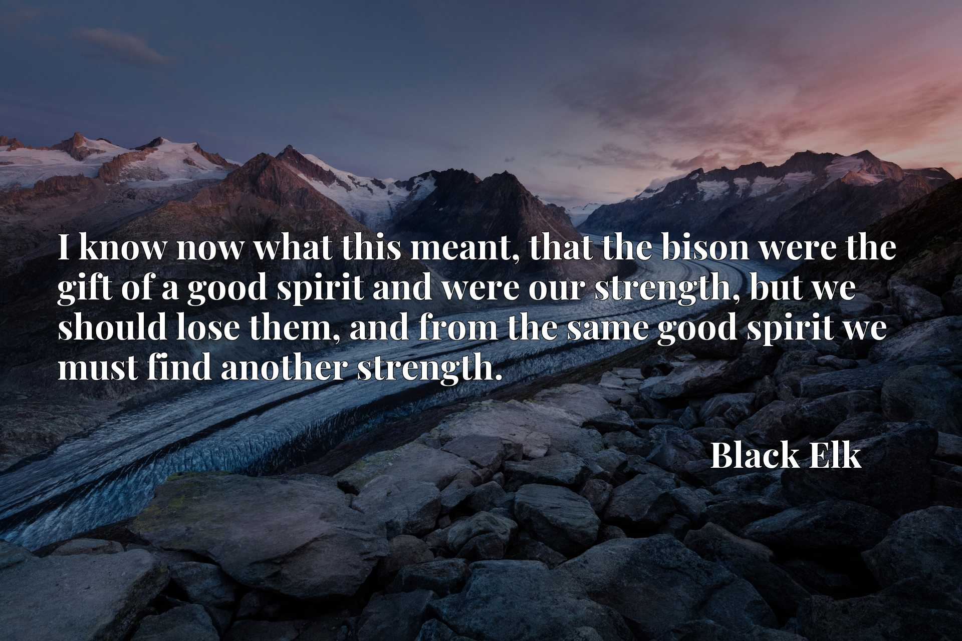 I know now what this meant, that the bison were the gift of a good spirit and were our strength, but we should lose them, and from the same good spirit we must find another strength.