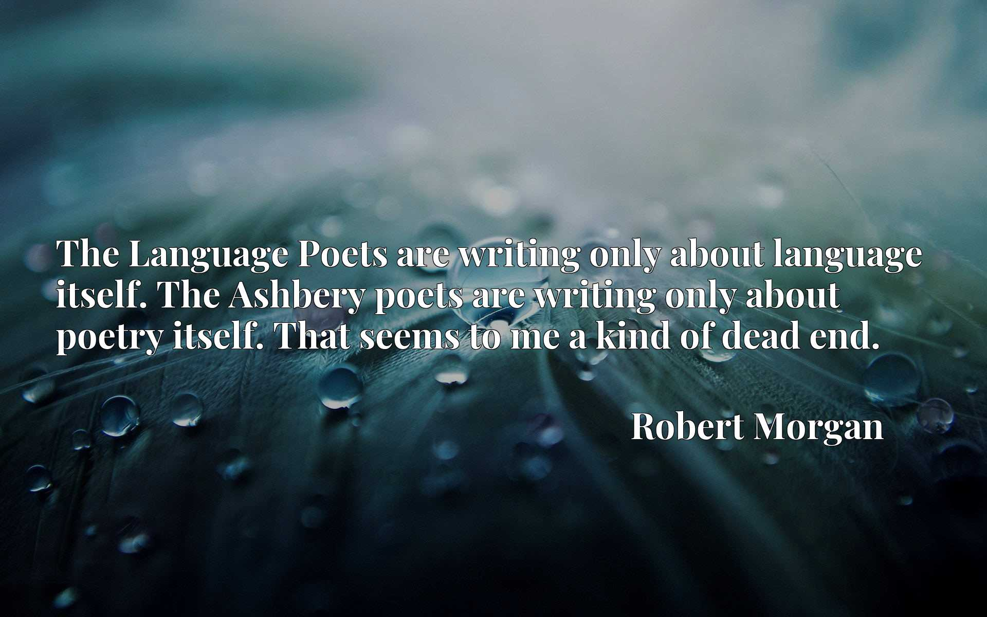 The Language Poets are writing only about language itself. The Ashbery poets are writing only about poetry itself. That seems to me a kind of dead end.