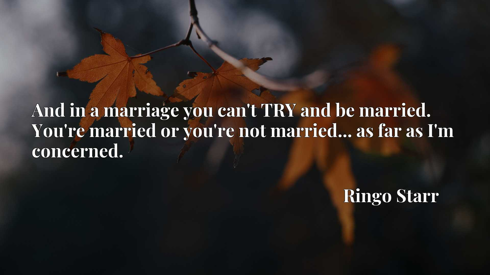 And in a marriage you can't TRY and be married. You're married or you're not married... as far as I'm concerned.