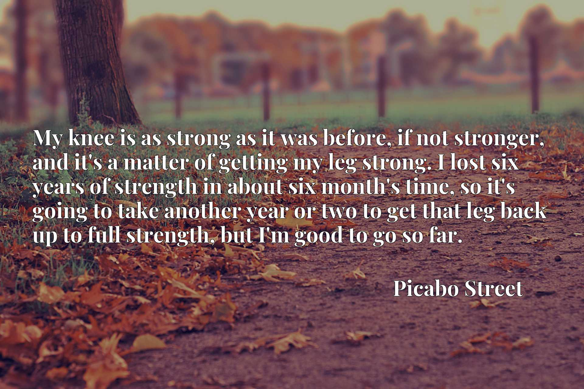 My knee is as strong as it was before, if not stronger, and it's a matter of getting my leg strong. I lost six years of strength in about six month's time, so it's going to take another year or two to get that leg back up to full strength, but I'm good to go so far.