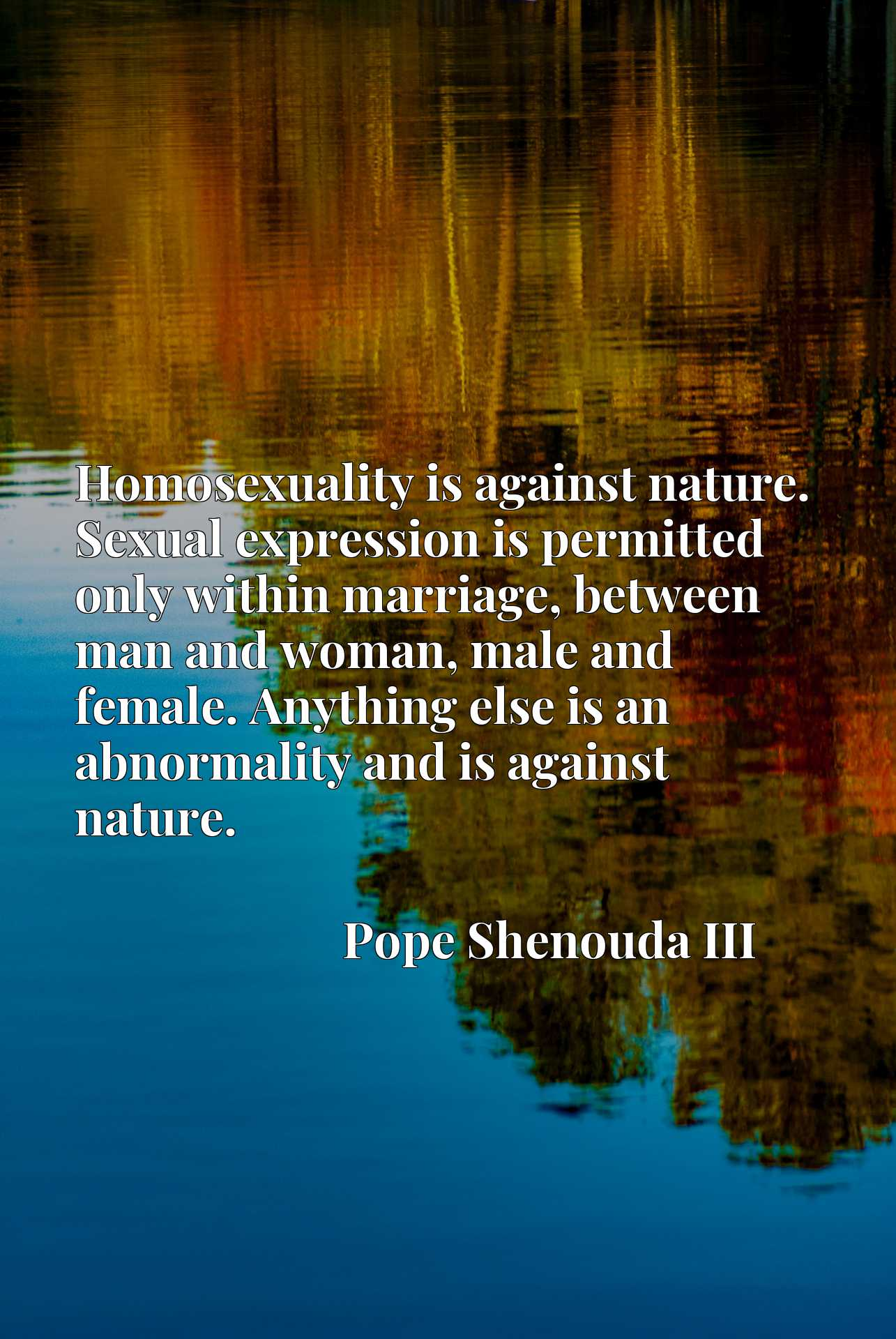 Homosexuality is against nature. Sexual expression is permitted only within marriage, between man and woman, male and female. Anything else is an abnormality and is against nature.