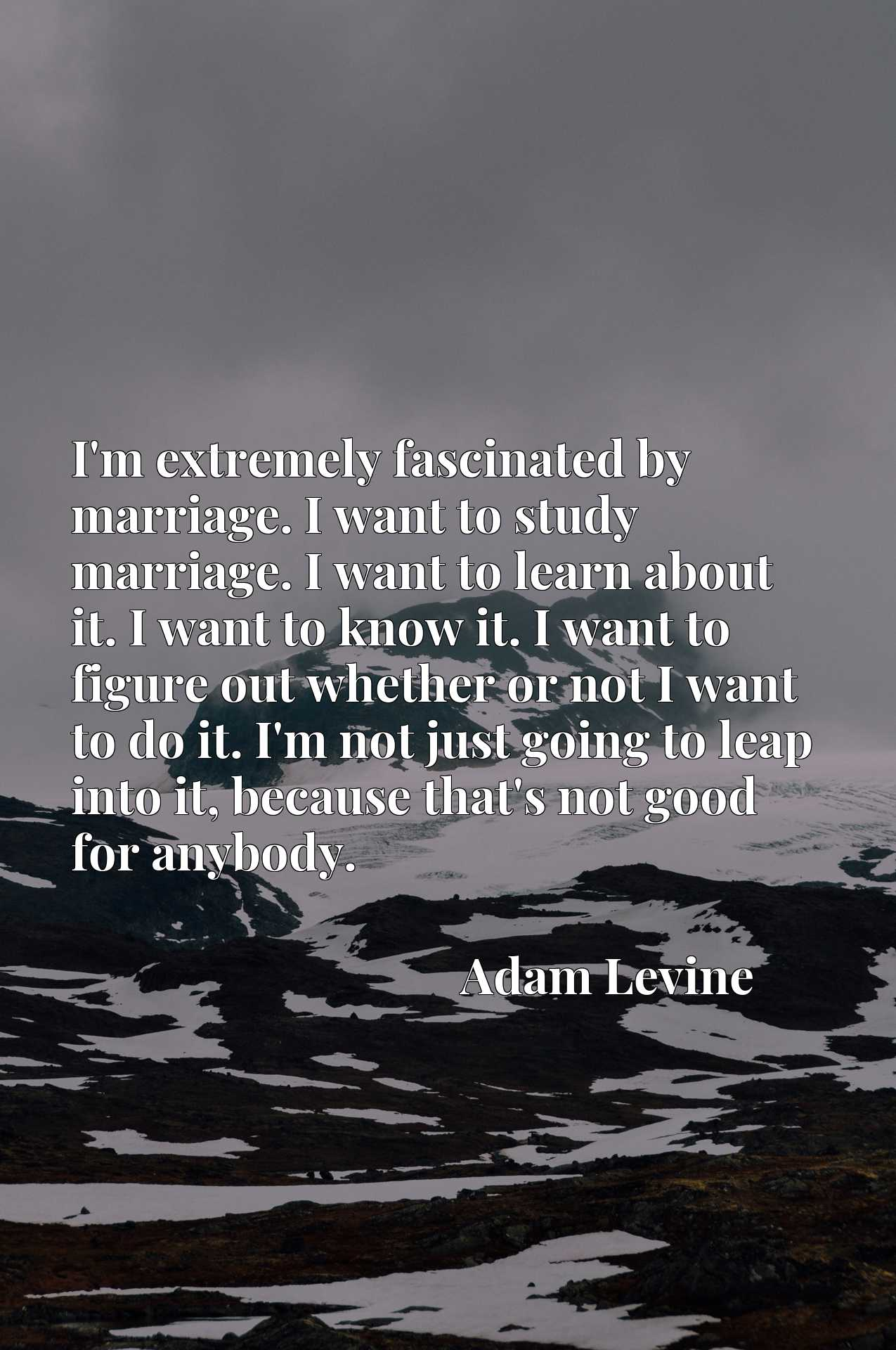 I'm extremely fascinated by marriage. I want to study marriage. I want to learn about it. I want to know it. I want to figure out whether or not I want to do it. I'm not just going to leap into it, because that's not good for anybody.