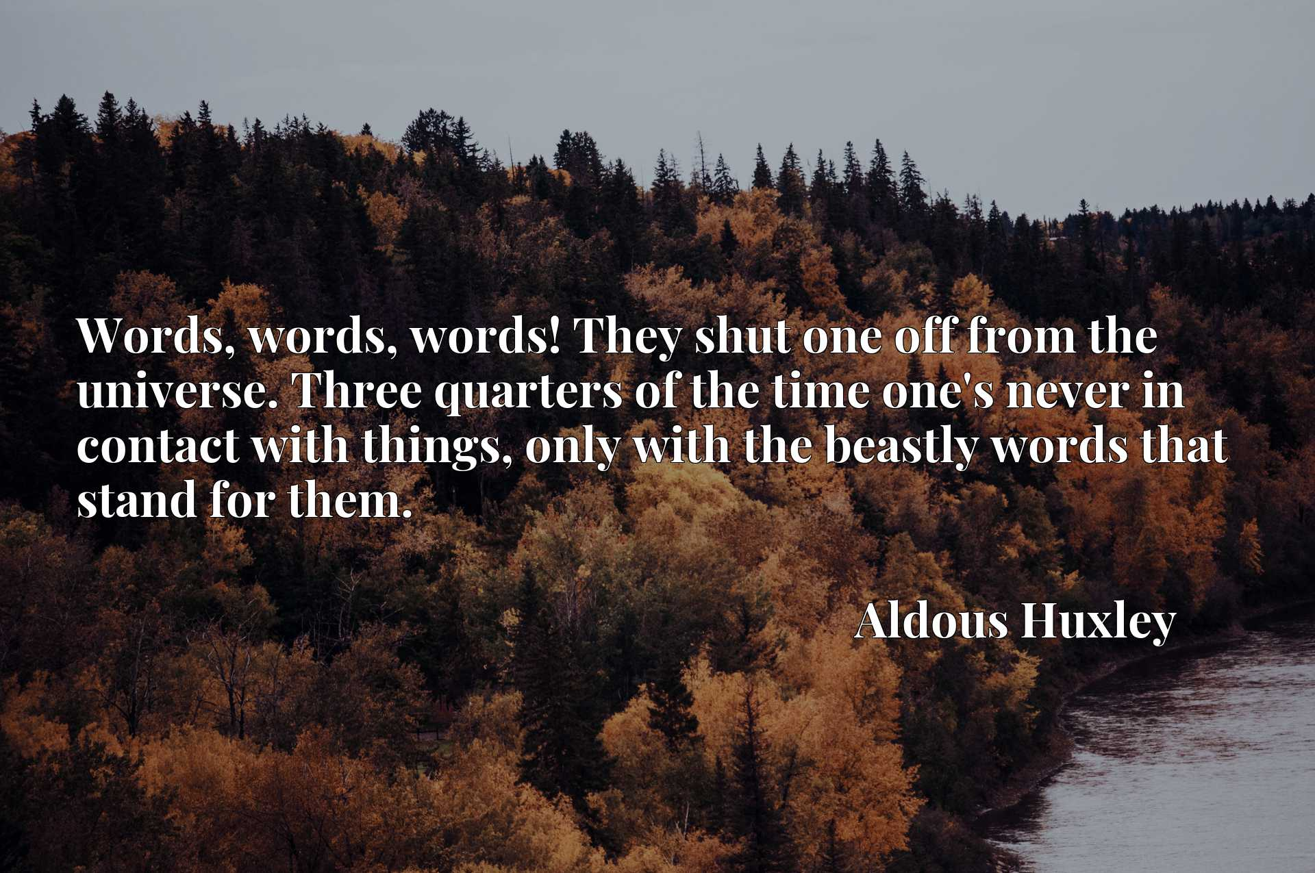 Words, words, words! They shut one off from the universe. Three quarters of the time one's never in contact with things, only with the beastly words that stand for them.