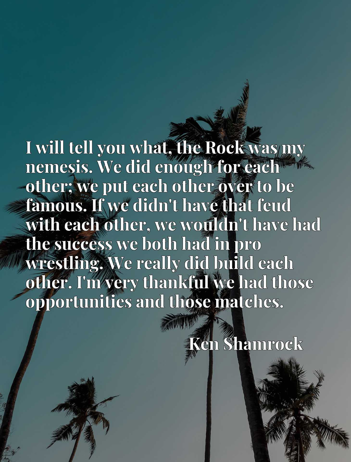 I will tell you what, the Rock was my nemesis. We did enough for each other; we put each other over to be famous. If we didn't have that feud with each other, we wouldn't have had the success we both had in pro wrestling. We really did build each other. I'm very thankful we had those opportunities and those matches.