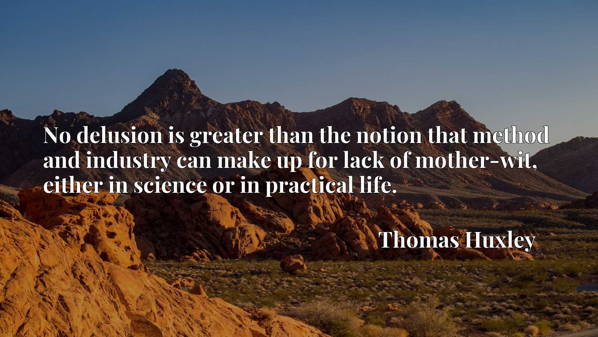 Quote Picture :No delusion is greater than the notion that method and industry can make up for lack of mother-wit, either in science or in practical life.